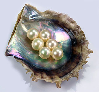 Your Choice Pearls Organic Substances Programme - German Gemmological Association (DGemG)